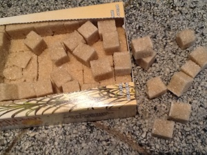 Klontjes suiker zijn verstopt in ...